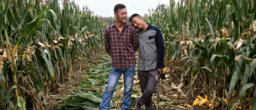 Online Media Draws Attention to Trials and Triumphs of Gay Couple in Rural China